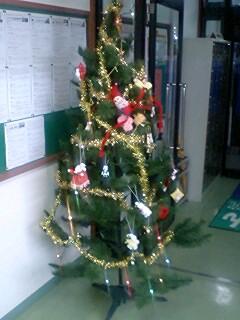 教室にクリスマスツリー