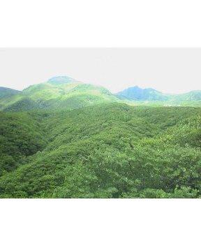 茶臼岳です